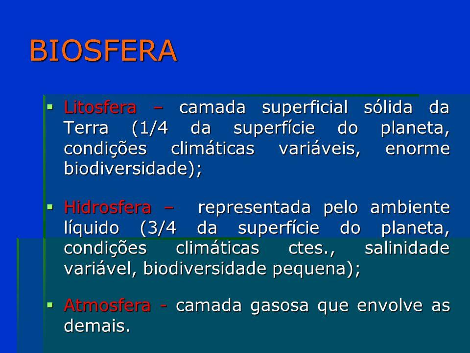 Pontos 1.A vida na biosfera 1. A vida na biosfera 2.