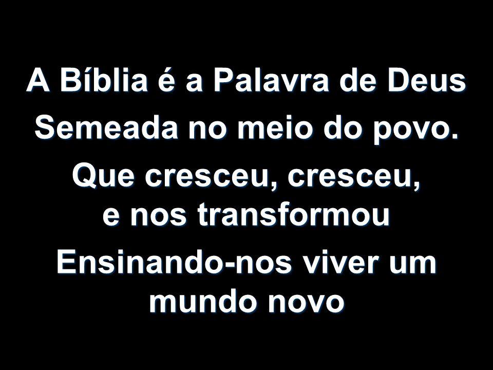 A Bíblia é a Palavra de Deus Semeada no meio do povo. Que cresceu, cresceu, e nos transformou Ensinando-nos viver um mundo novo