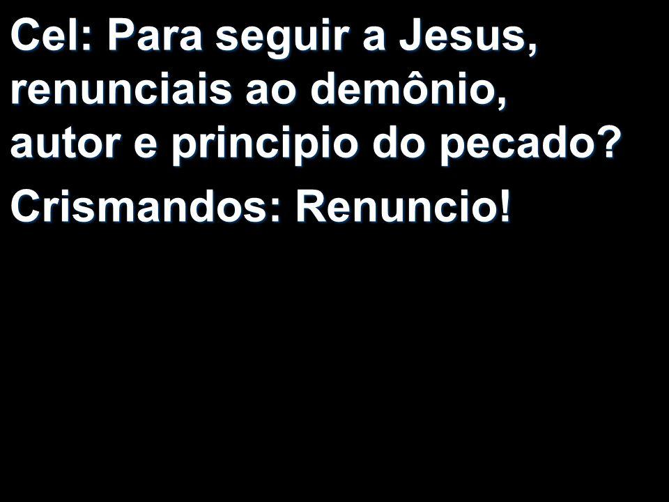 Cel: Para seguir a Jesus, renunciais ao demônio, autor e principio do pecado? Crismandos: Renuncio!