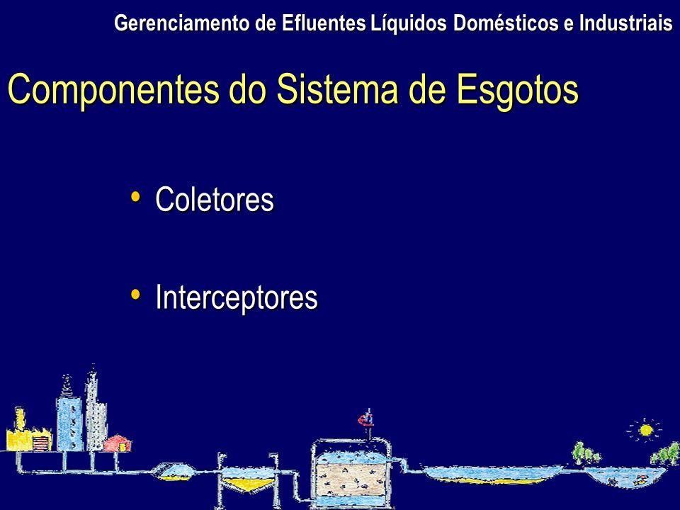 Gerenciamento de Efluentes Líquidos Domésticos e Industriais Coletores Coletores Interceptores Interceptores Componentes do Sistema de Esgotos