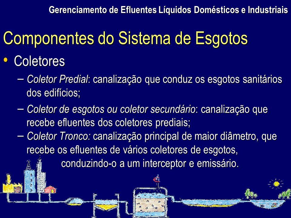 Gerenciamento de Efluentes Líquidos Domésticos e Industriais Coletores Coletores – Coletor Predial : canalização que conduz os esgotos sanitários dos