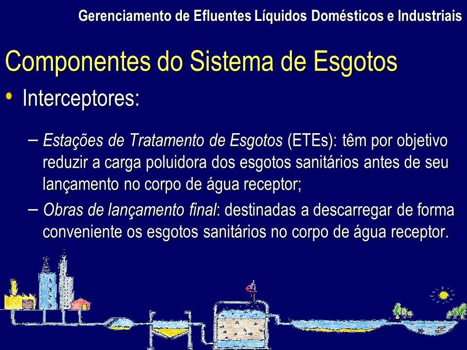 Gerenciamento de Efluentes Líquidos Domésticos e Industriais Interceptores: Interceptores: – Estações de Tratamento de Esgotos (ETEs): têm por objetiv