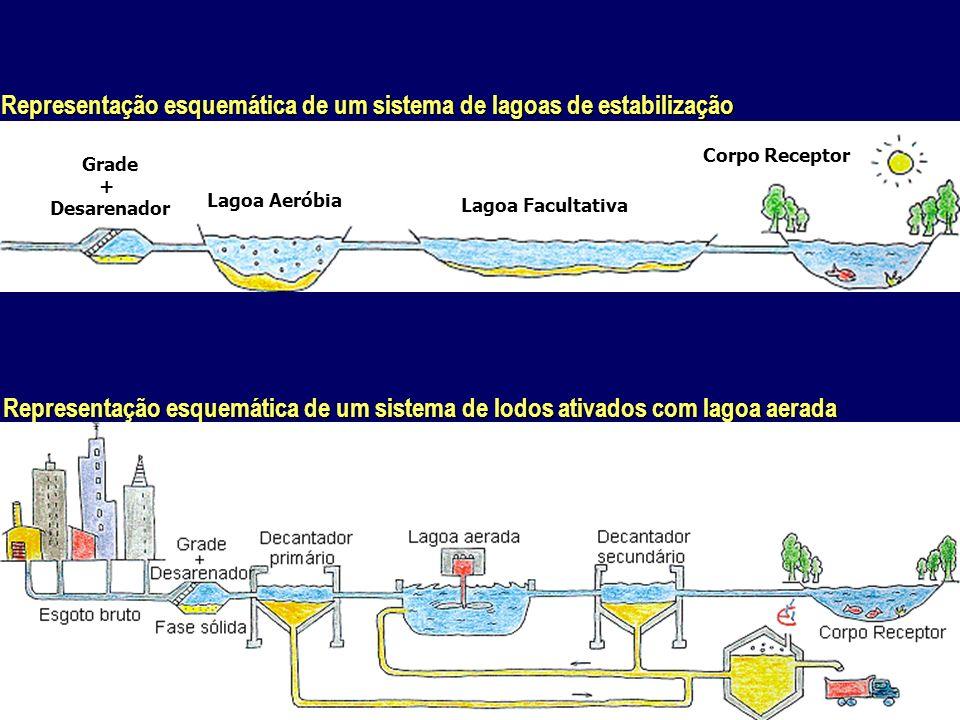 Representação esquemática de um sistema de lagoas de estabilização Representação esquemática de um sistema de lodos ativados com lagoa aerada Lagoa Ae