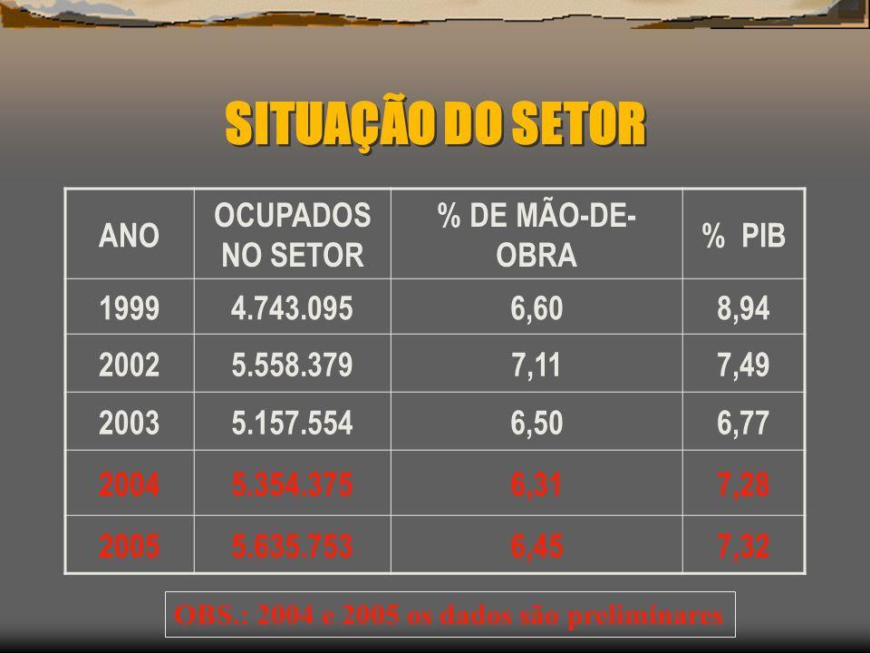 SITUAÇÃO DO SETOR ANO OCUPADOS NO SETOR % DE MÃO-DE- OBRA % PIB 19994.743.0956,608,94 20025.558.3797,117,49 20035.157.5546,506,77 20045.354.3756,317,2