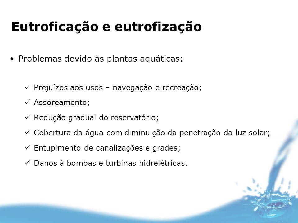 Problemas devido às plantas aquáticas: Prejuízos aos usos – navegação e recreação; Assoreamento; Redução gradual do reservatório; Cobertura da água co