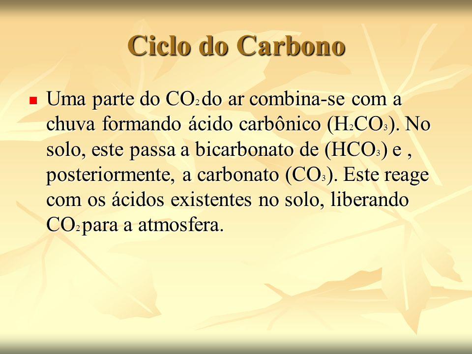 Ciclo do Carbono Uma parte do CO 2 do ar combina-se com a chuva formando ácido carbônico (H 2 CO 3 ). No solo, este passa a bicarbonato de (HCO 3 ) e,