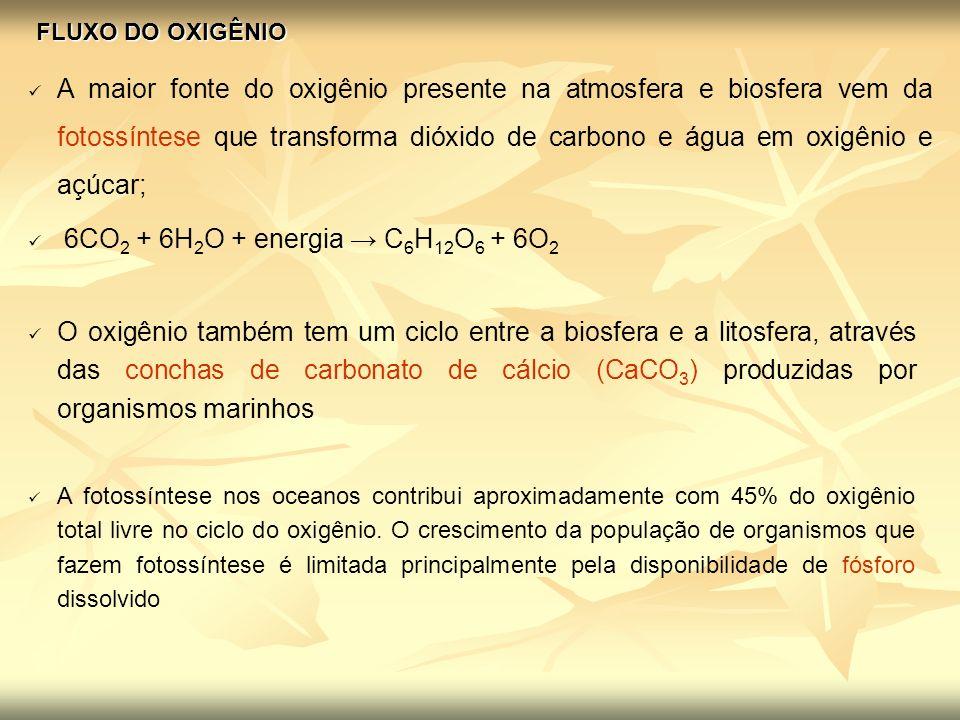FLUXO DO OXIGÊNIO A maior fonte do oxigênio presente na atmosfera e biosfera vem da fotossíntese que transforma dióxido de carbono e água em oxigênio