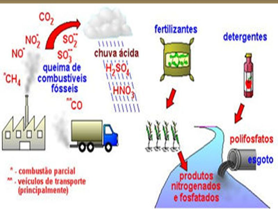 O carbono emitido pelas fontes bióticas e pelo uso da energia é parcialmente absorvido nos sumidouros naturais (biomassa e oceanos), ficando o restante na atmosfera.