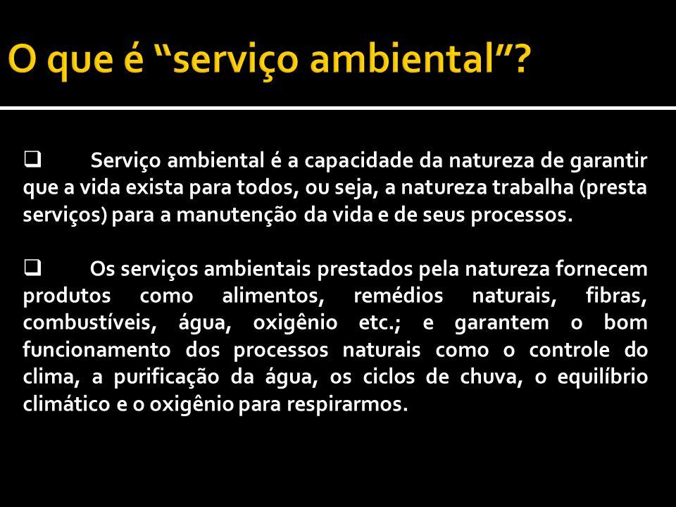 Serviço ambiental é a capacidade da natureza de garantir que a vida exista para todos, ou seja, a natureza trabalha (presta serviços) para a manutenção da vida e de seus processos.