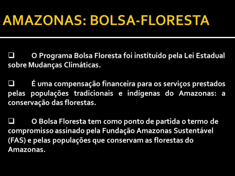 O Programa Bolsa Floresta foi instituido pela Lei Estadual sobre Mudanças Climáticas. É uma compensação financeira para os serviços prestados pelas po