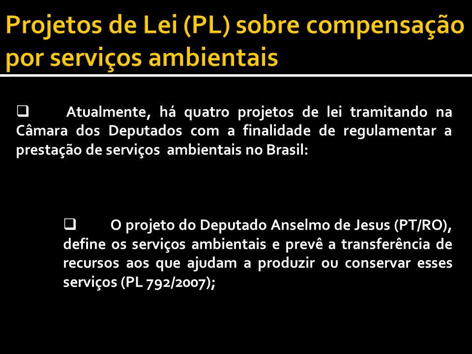 Atualmente, há quatro projetos de lei tramitando na Câmara dos Deputados com a finalidade de regulamentar a prestação de serviços ambientais no Brasil