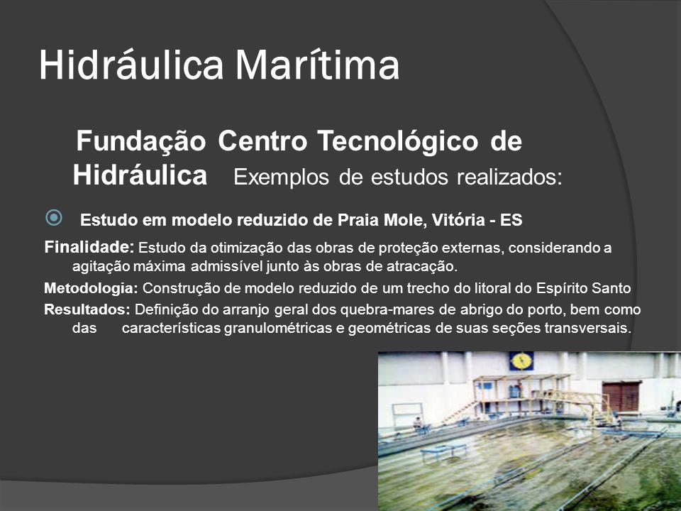 Hidráulica Marítima Fundação Centro Tecnológico de Hidráulica Exemplos de estudos realizados: Estudo em modelo reduzido de Praia Mole, Vitória - ES Fi