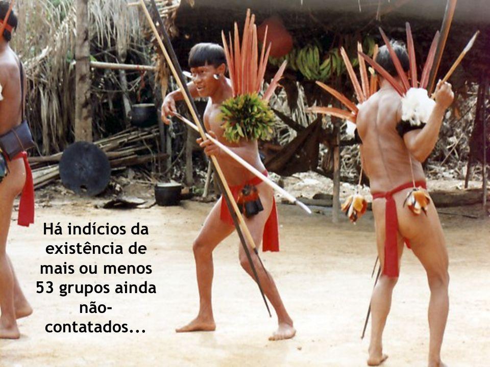 Nos últimos 30 anos, os povos indígenas brasileiros intensificaram sua participação na vida política, aumentando, em conseqüência, o reconhecimento geral dos seus direitos.