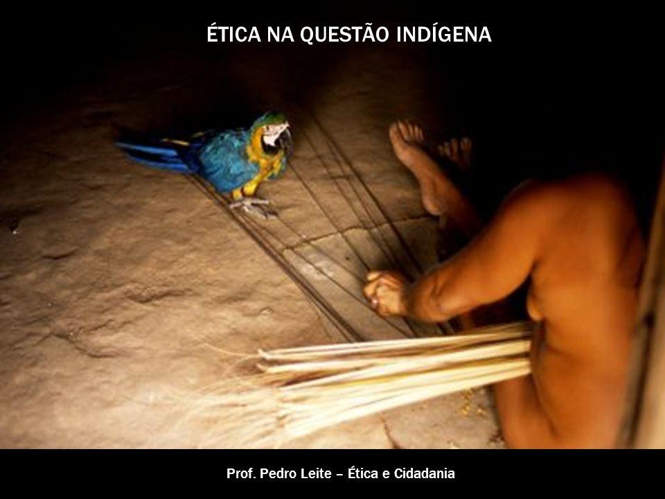 QUESTÃO TERRITORIAL Aspectos Históricos: 1500 – cerca de 5 milhões de indígenas (80 milhões na América Latina) 1990 – cerca de 400.00 Os indígenas foram perdendo suas terras e suas vidas com a invasão européia.
