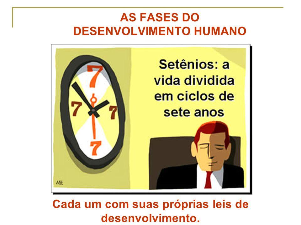 Delcimar de Oliveira Cunha Psicopedagoga SETÊNIOS: divisão com propósito didático Cada passagem é marcada por acontecimentos que levam a vida para uma direção diferente.