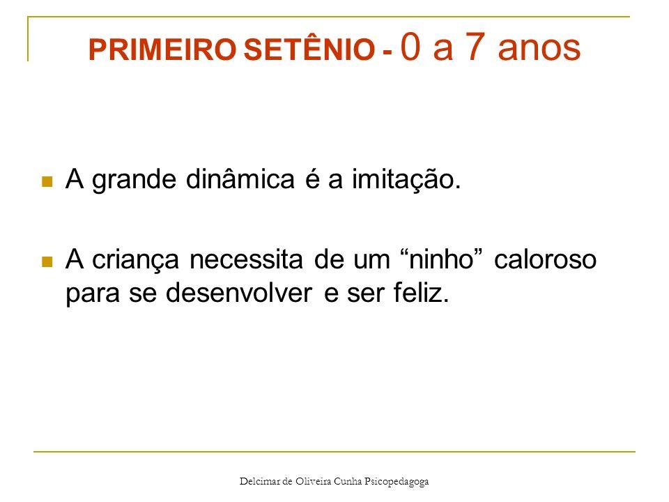 Delcimar de Oliveira Cunha Psicopedagoga Perguntas relacionadas ao quarto setênio Escolheu a profissão certa.