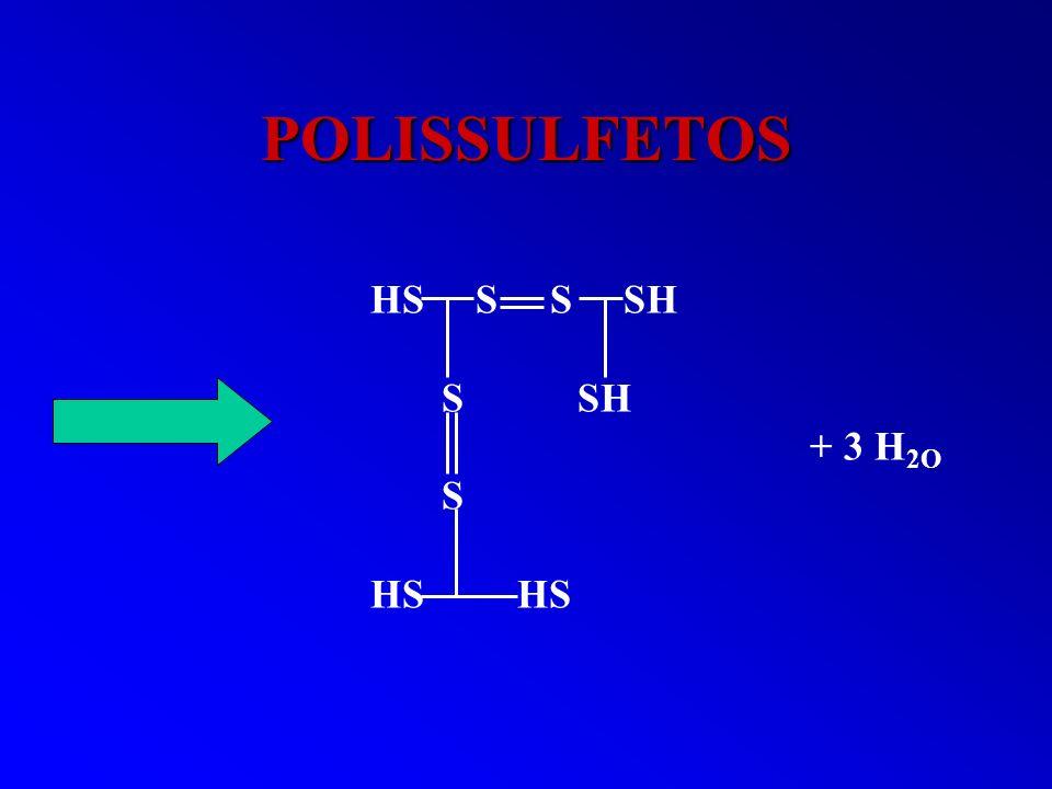POLISSULFETOS HS S S SH S SH + 3 H 2O S HS