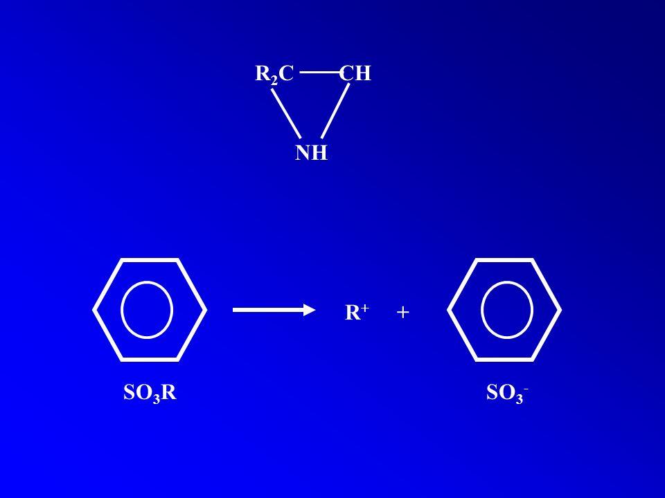 R 2 C CH NH R + + SO 3 R SO 3 -