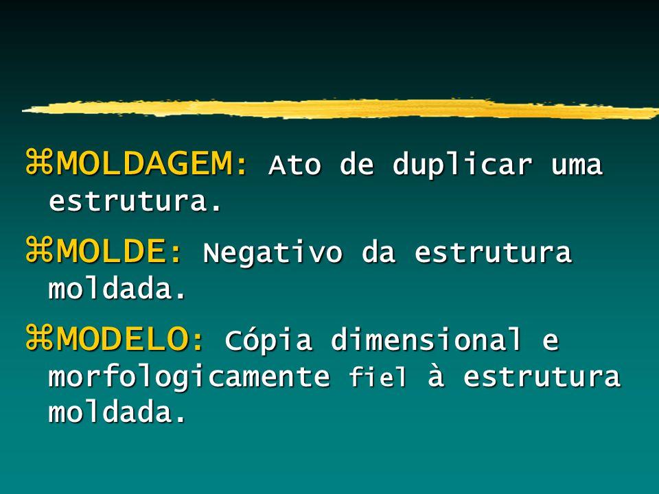 zMOLDAGEM : Ato de duplicar uma estrutura. zMOLDE : Negativo da estrutura moldada. zMODELO : Cópia dimensional e morfologicamente fiel à estrutura mol