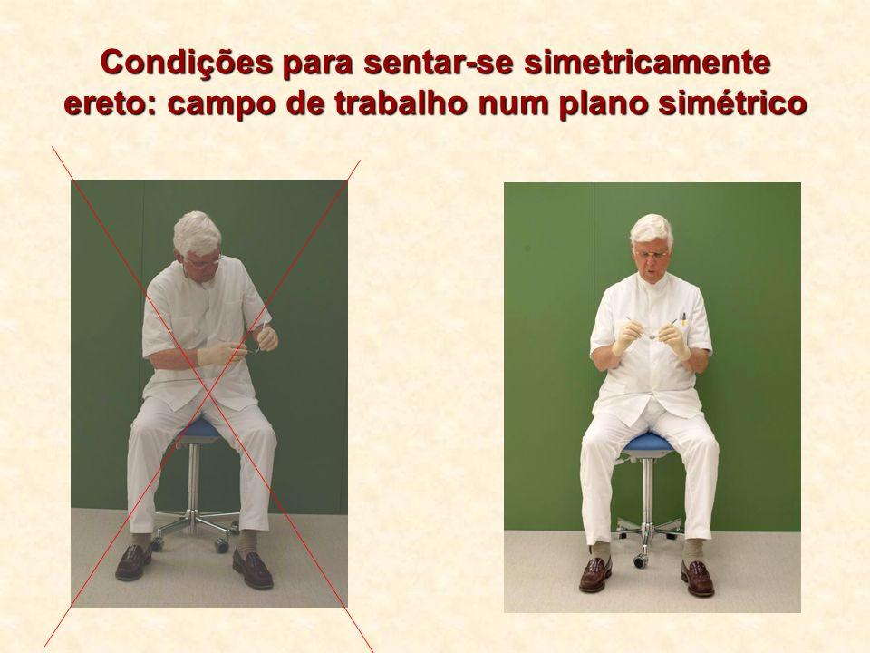 Condições para sentar-se simetricamente ereto: campo de trabalho num plano simétrico