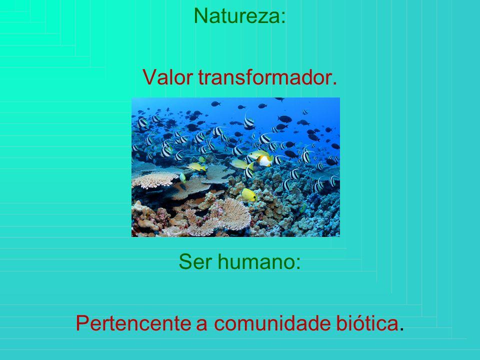 Natureza: Valor transformador. Ser humano: Pertencente a comunidade biótica.