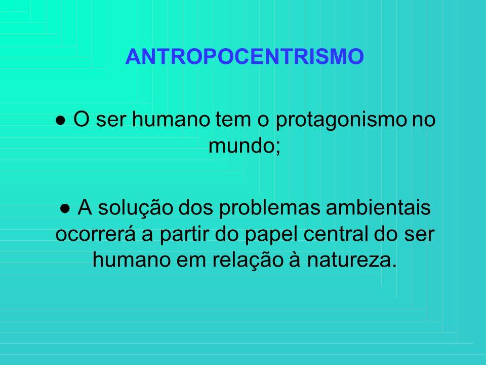 ANTROPOCENTRISMO O ser humano tem o protagonismo no mundo; A solução dos problemas ambientais ocorrerá a partir do papel central do ser humano em rela