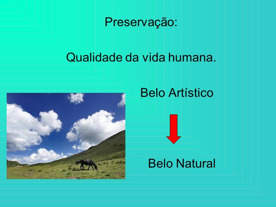 Preservação: Qualidade da vida humana. Belo Artístico Belo Natural