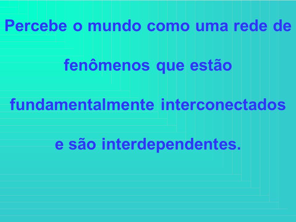 Percebe o mundo como uma rede de fenômenos que estão fundamentalmente interconectados e são interdependentes.