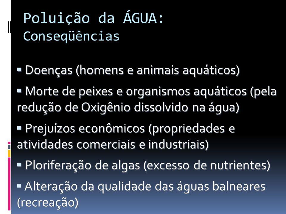 Poluição da ÁGUA: Conseqüências Doenças (homens e animais aquáticos) Doenças (homens e animais aquáticos) Morte de peixes e organismos aquáticos (pela