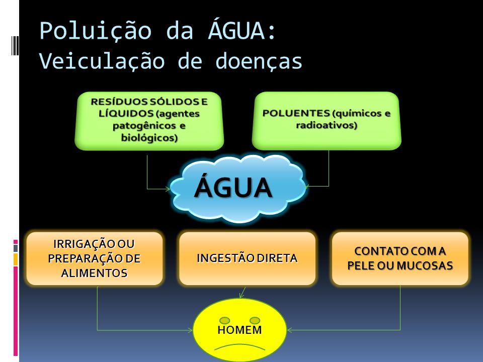 Poluição da ÁGUA: Veiculação de doenças ÁGUA IRRIGAÇÃO OU PREPARAÇÃO DE ALIMENTOS INGESTÃO DIRETA CONTATO COM A PELE OU MUCOSAS HOMEM