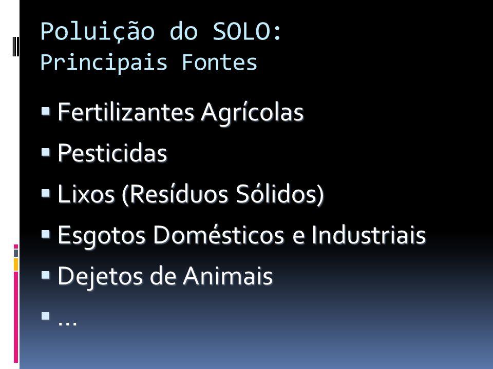 Poluição do SOLO: Principais Fontes Fertilizantes Agrícolas Fertilizantes Agrícolas Pesticidas Pesticidas Lixos (Resíduos Sólidos) Lixos (Resíduos Sól