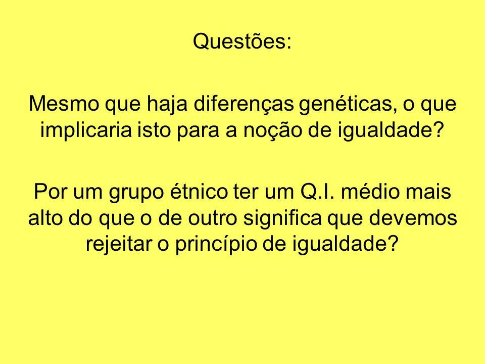 Questões: Mesmo que haja diferenças genéticas, o que implicaria isto para a noção de igualdade? Por um grupo étnico ter um Q.I. médio mais alto do que