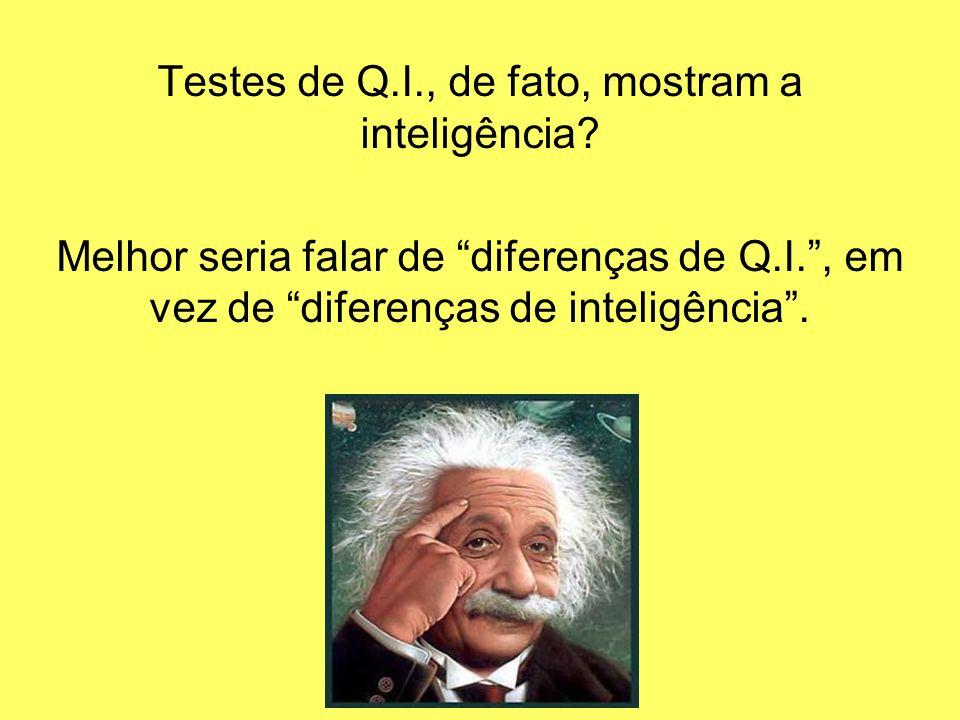Testes de Q.I., de fato, mostram a inteligência? Melhor seria falar de diferenças de Q.I., em vez de diferenças de inteligência.