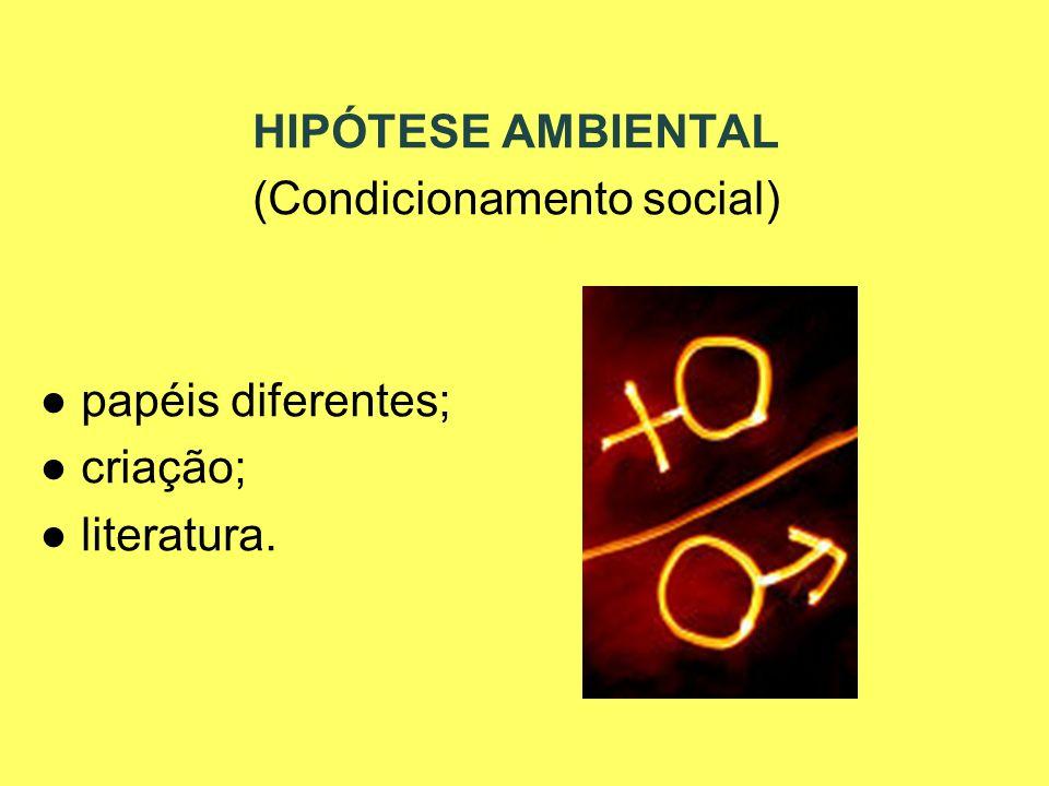 HIPÓTESE AMBIENTAL (Condicionamento social) papéis diferentes; criação; literatura.