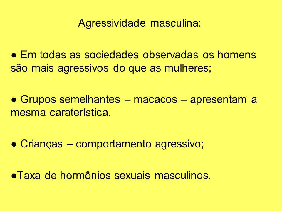 Agressividade masculina: Em todas as sociedades observadas os homens são mais agressivos do que as mulheres; Grupos semelhantes – macacos – apresentam