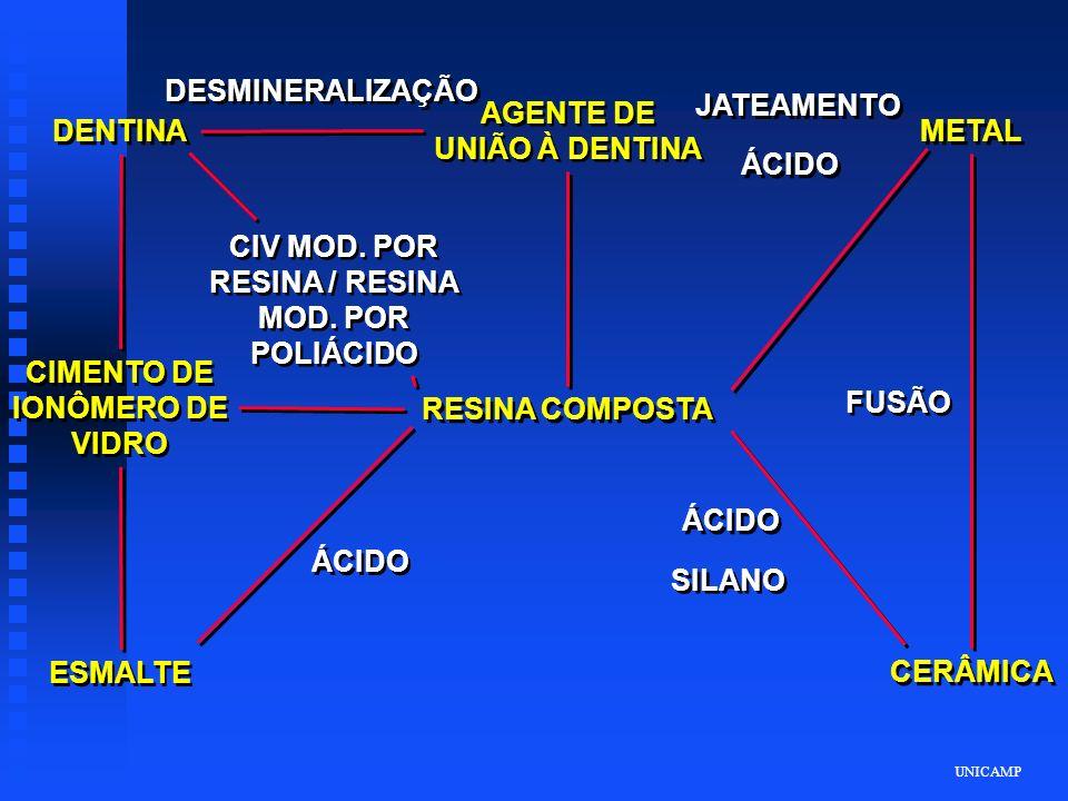 UNICAMP DENTINA DESMINERALIZAÇÃO AGENTE DE UNIÃO À DENTINA JATEAMENTO ÁCIDO METAL FUSÃO CERÂMICA ÁCIDO SILANO ÁCIDO RESINA COMPOSTA ESMALTE CIMENTO DE