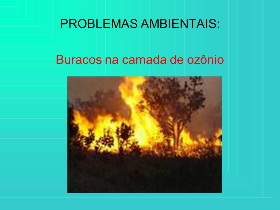 PROBLEMAS AMBIENTAIS: Buracos na camada de ozônio