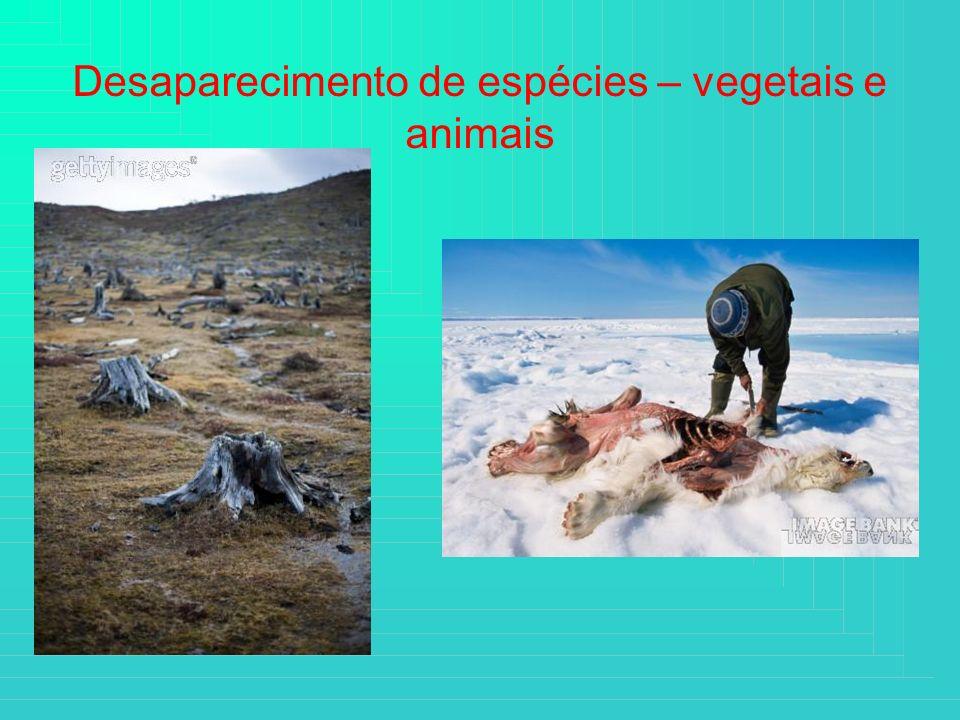 Desaparecimento de espécies – vegetais e animais