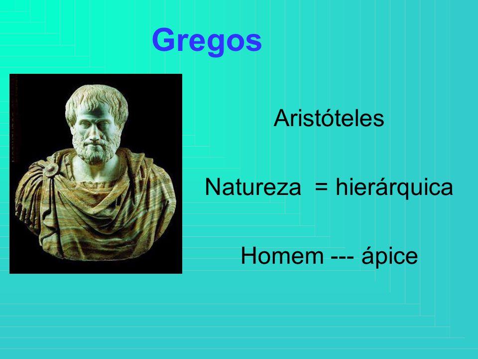 Aristóteles Natureza = hierárquica Homem --- ápice Gregos