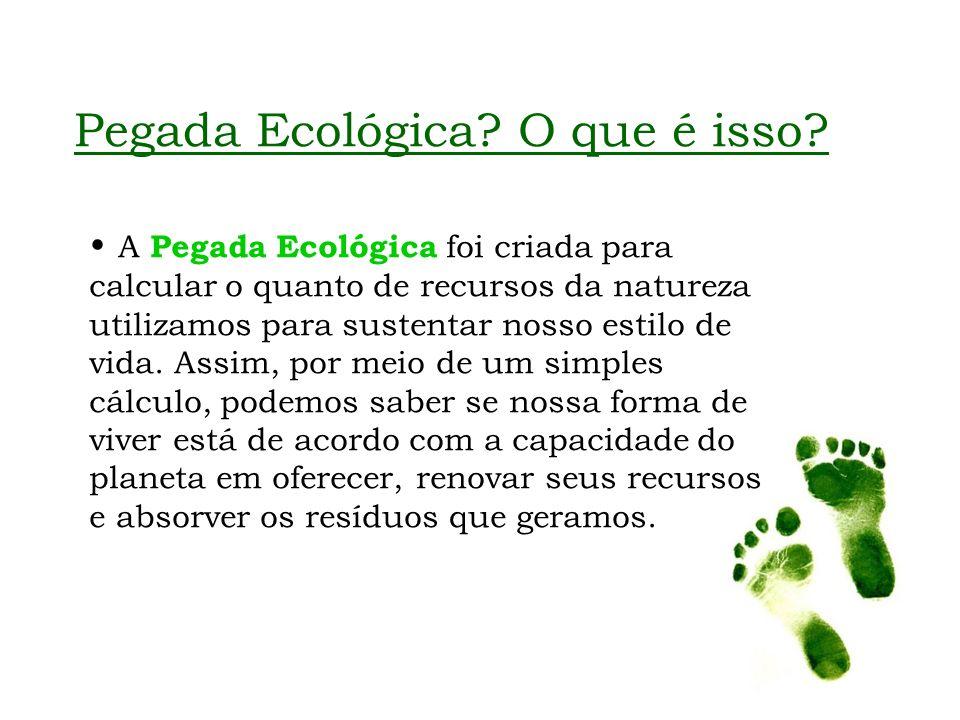 Pegada Ecológica? O que é isso? A Pegada Ecológica foi criada para calcular o quanto de recursos da natureza utilizamos para sustentar nosso estilo de