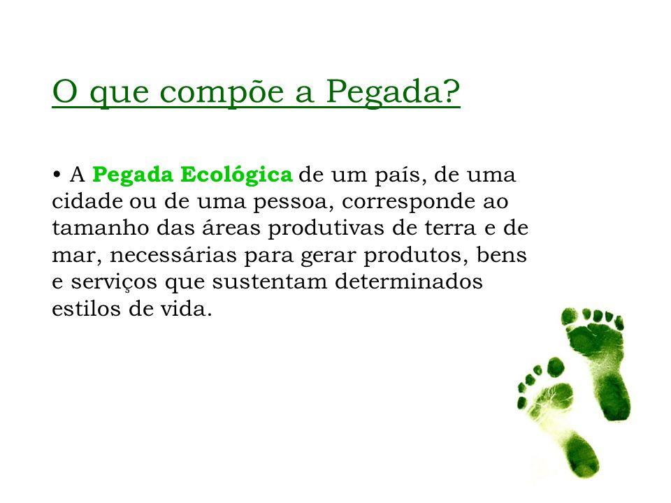 O que compõe a Pegada? A Pegada Ecológica de um país, de uma cidade ou de uma pessoa, corresponde ao tamanho das áreas produtivas de terra e de mar, n