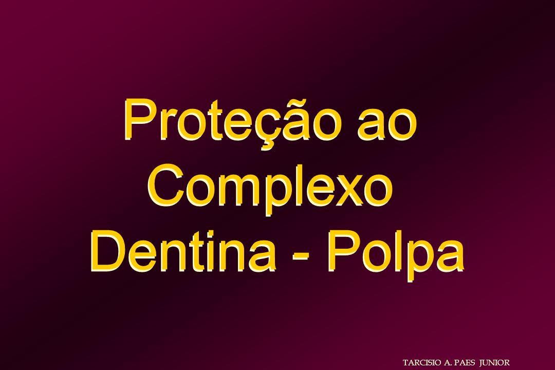 Proteção ao Complexo Dentina - Polpa Proteção ao Complexo Dentina - Polpa TARCISIO A. PAES JUNIOR