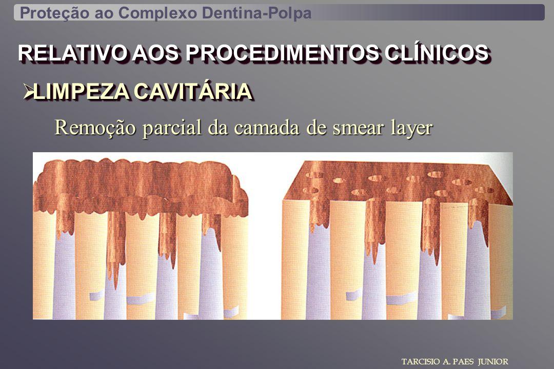 RELATIVO AOS PROCEDIMENTOS CLÍNICOS LIMPEZA CAVITÁRIA LIMPEZA CAVITÁRIA TARCISIO A. PAES JUNIOR Proteção ao Complexo Dentina-Polpa Remoção parcial da