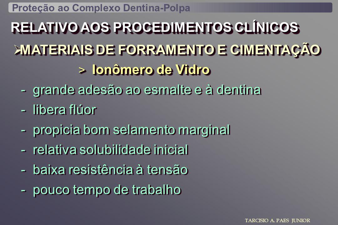 RELATIVO AOS PROCEDIMENTOS CLÍNICOS MATERIAIS DE FORRAMENTO E CIMENTAÇÃO MATERIAIS DE FORRAMENTO E CIMENTAÇÃO TARCISIO A. PAES JUNIOR > Ionômero de Vi
