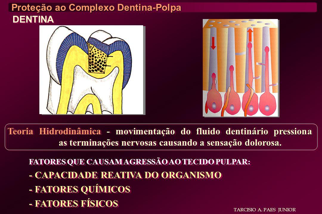 TARCISIO A. PAES JUNIOR Proteção ao Complexo Dentina-Polpa DENTINA Teoria Hidrodinâmica - movimentação do fluido dentinário pressiona as terminações n