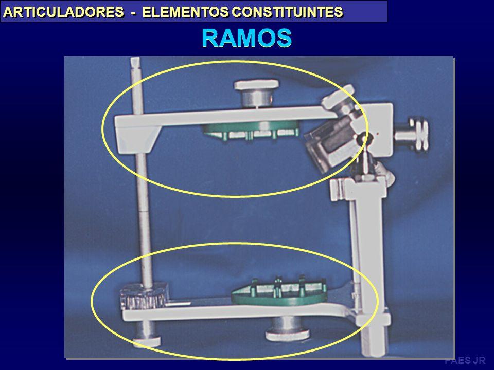 PAES JR ARTICULADORES - ELEMENTOS CONSTITUINTES RAMOS