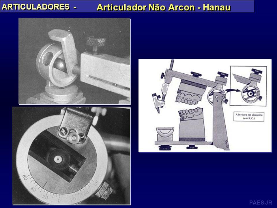 PAES JR ARTICULADORES - Articulador Não Arcon - Hanau
