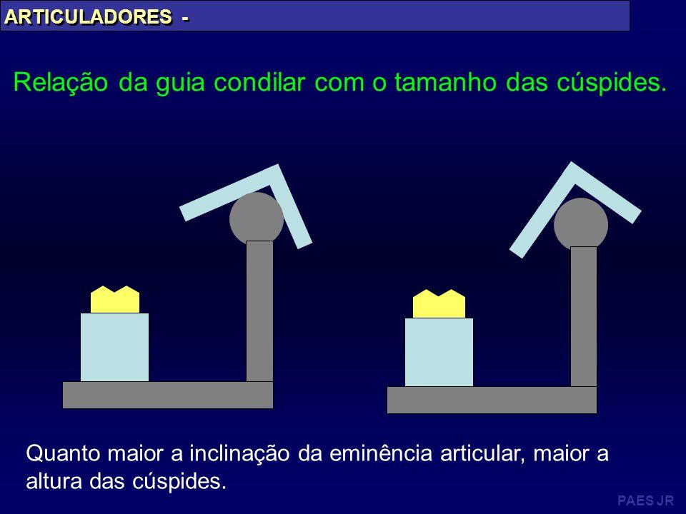 PAES JR ARTICULADORES - Relação da guia condilar com o tamanho das cúspides. Quanto maior a inclinação da eminência articular, maior a altura das cúsp