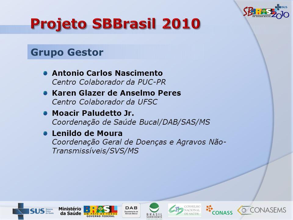 Grupo Gestor Antonio Carlos Nascimento Centro Colaborador da PUC-PR Karen Glazer de Anselmo Peres Centro Colaborador da UFSC Moacir Paludetto Jr. Coor