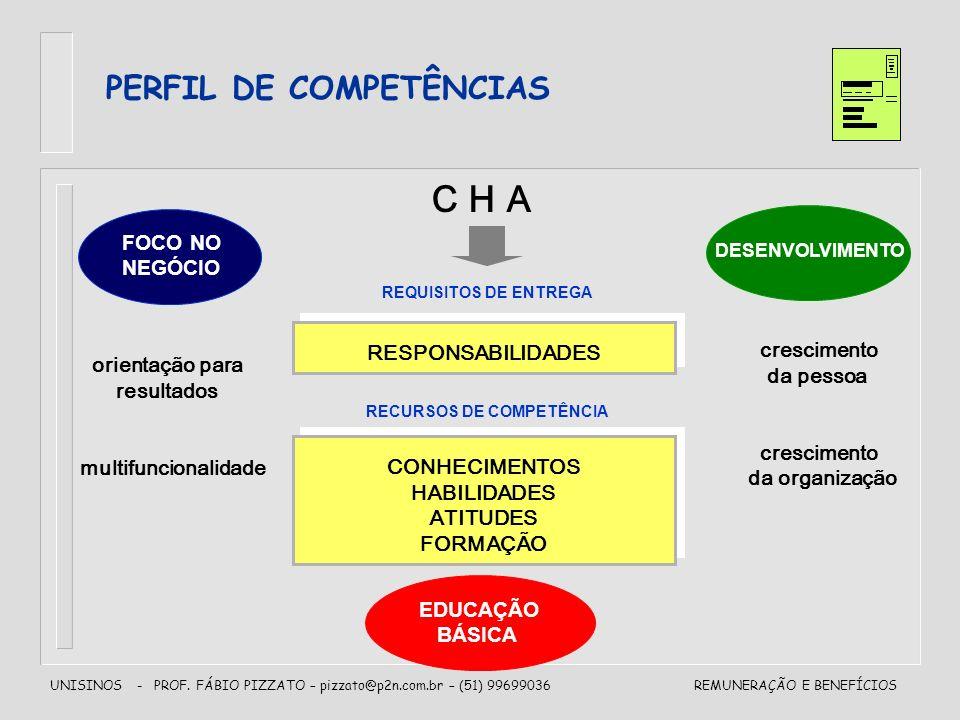 UNISINOS - PROF. FÁBIO PIZZATO – pizzato@p2n.com.br – (51) 99699036REMUNERAÇÃO E BENEFÍCIOS PERFIL DE COMPETÊNCIAS CONHECIMENTOS HABILIDADES ATITUDES